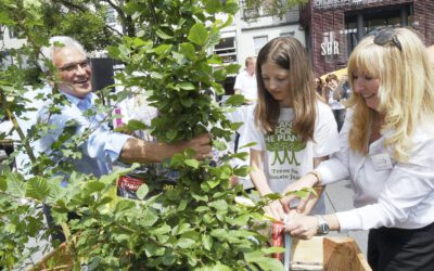 """Start of the climate initiative """"Ulm plants trees"""" on climate protection day"""